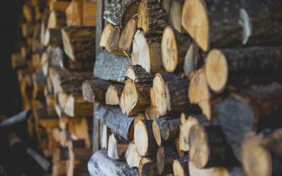Join the renewable energy revolution by burning sustainable wood